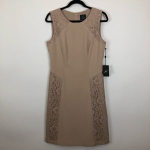 Adrianna papell NWT beige crochet lace dress 10